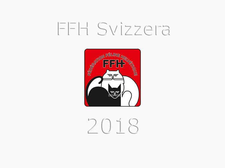 Calendario Svizzero.Calendario Expo 2018 Ffh Fife Svizzera